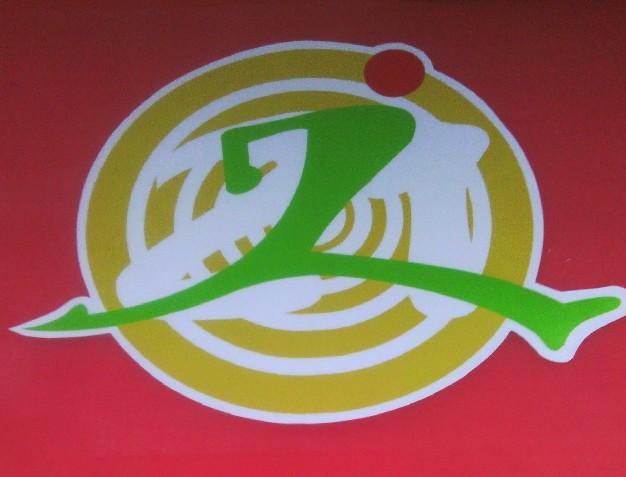 班徽设计图片及寓意手绘的翅膀展示