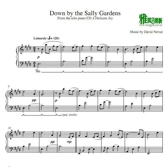 david nevue - down by the sally gardens 钢琴谱