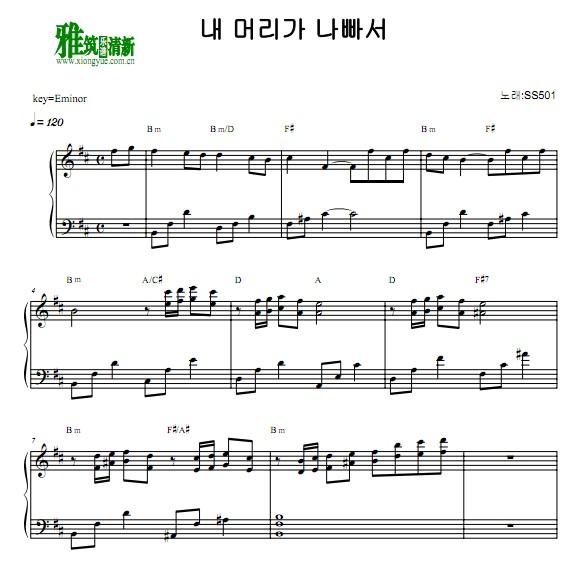 ss501- 因为太傻钢琴谱